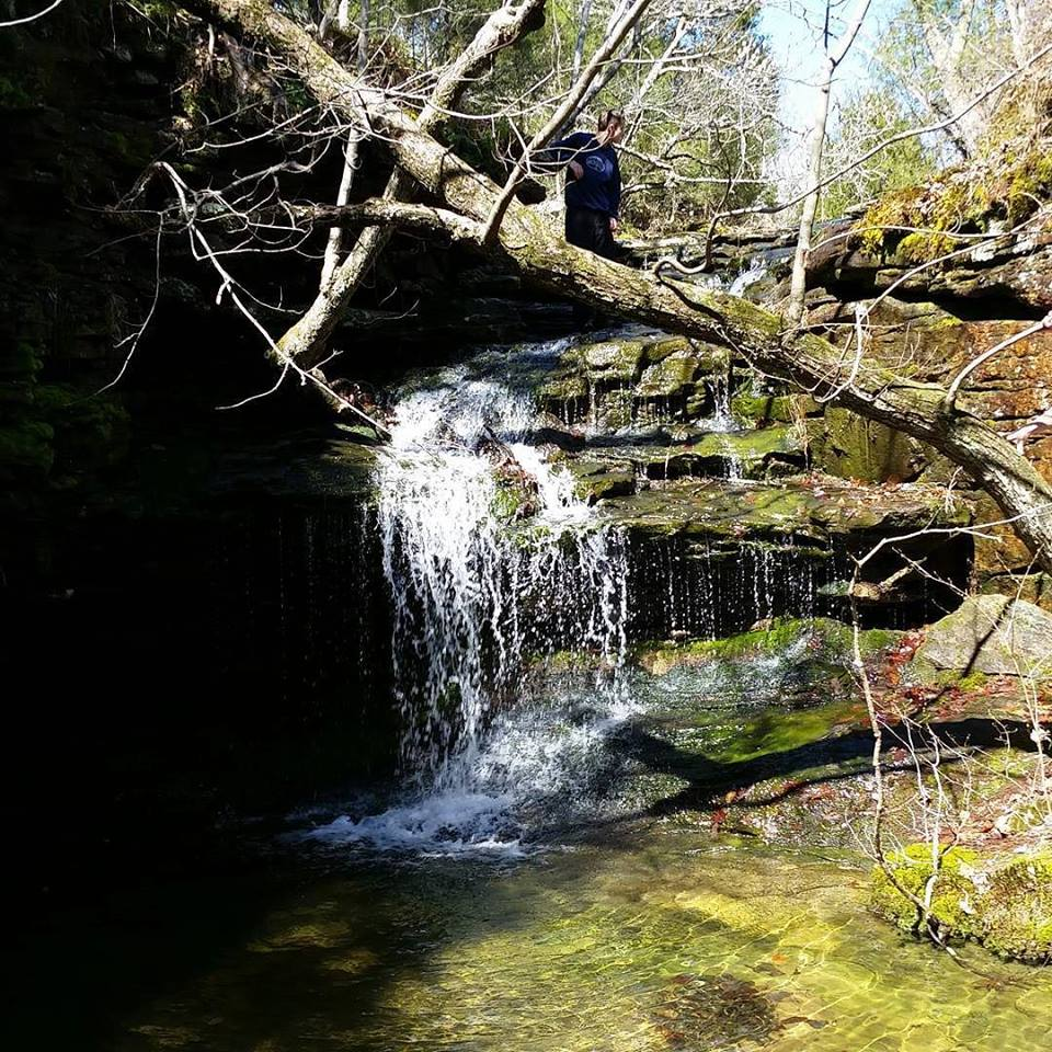 Photos From Hike To Fern Grotto And Castle Rock St Justin Martyr